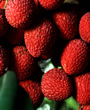 Lychee - 100 pcs- We alway's pick the best